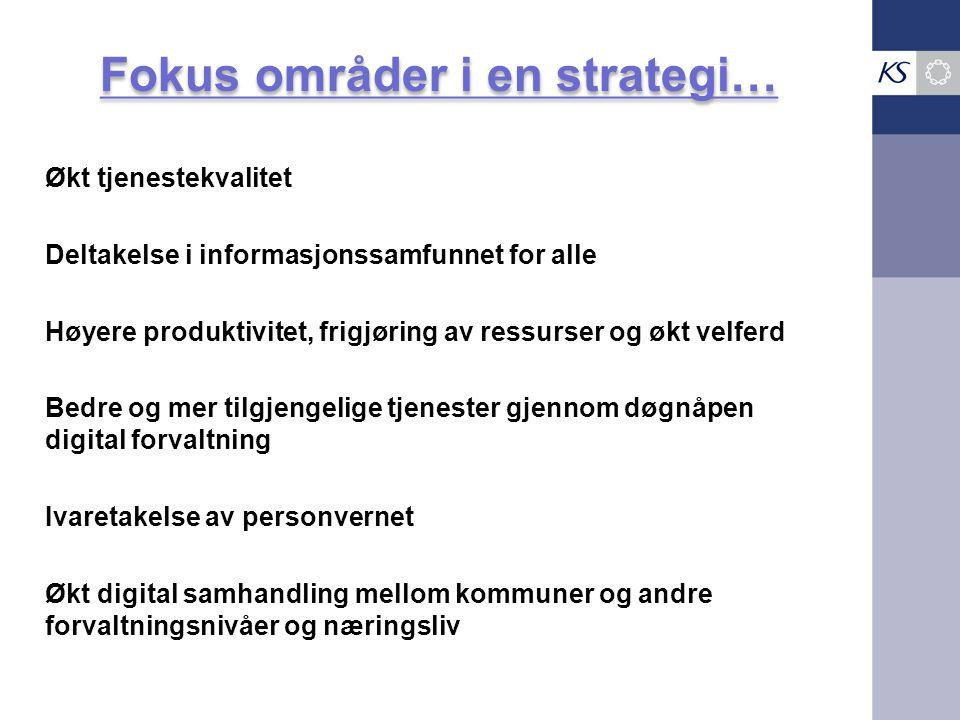 Fokus områder i en strategi…
