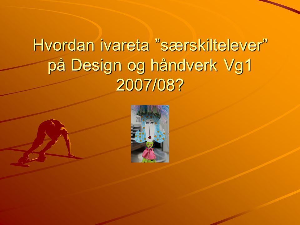 Hvordan ivareta særskiltelever på Design og håndverk Vg1 2007/08