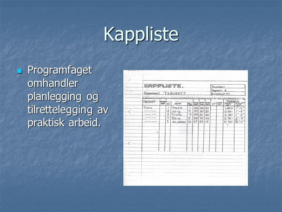 Kappliste Programfaget omhandler planlegging og tilrettelegging av praktisk arbeid.