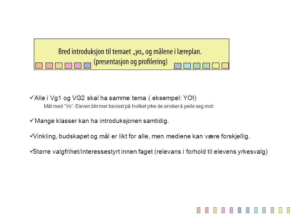 Alle i Vg1 og VG2 skal ha samme tema ( eksempel: YO!)