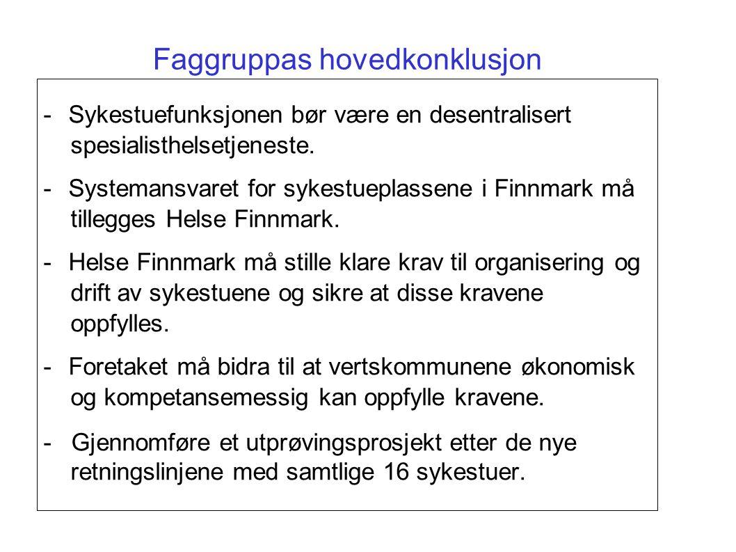 Faggruppas hovedkonklusjon