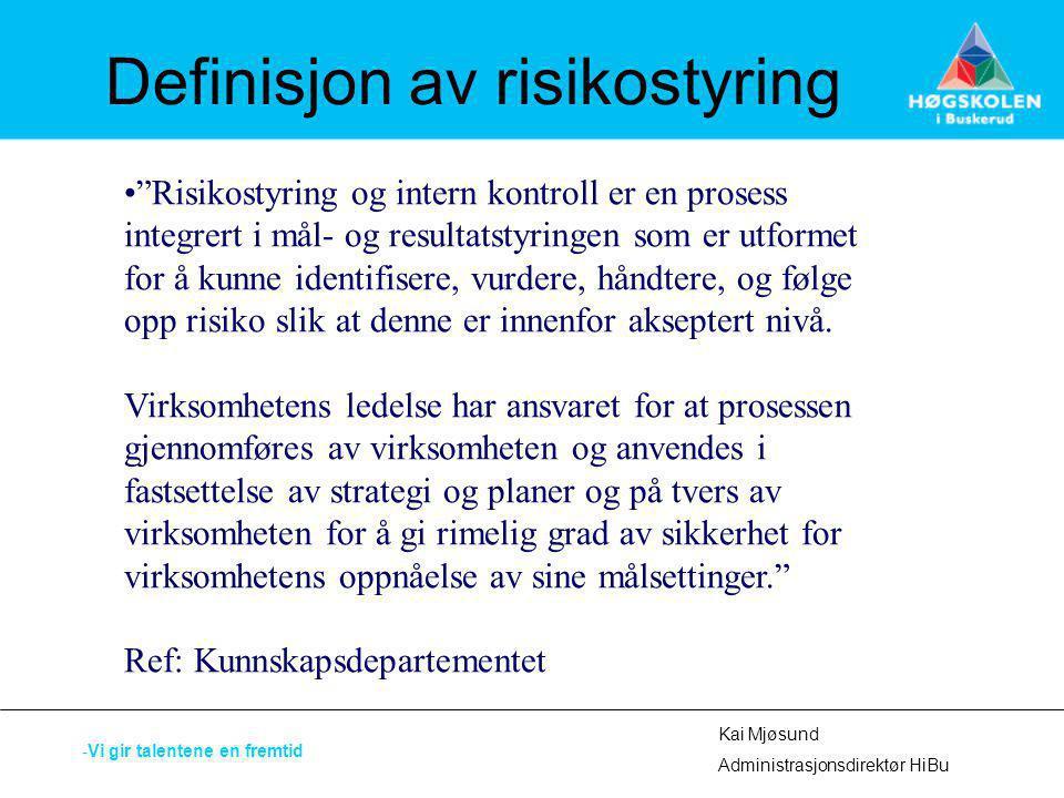 Definisjon av risikostyring