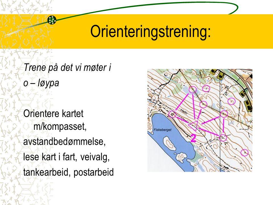Orienteringstrening: