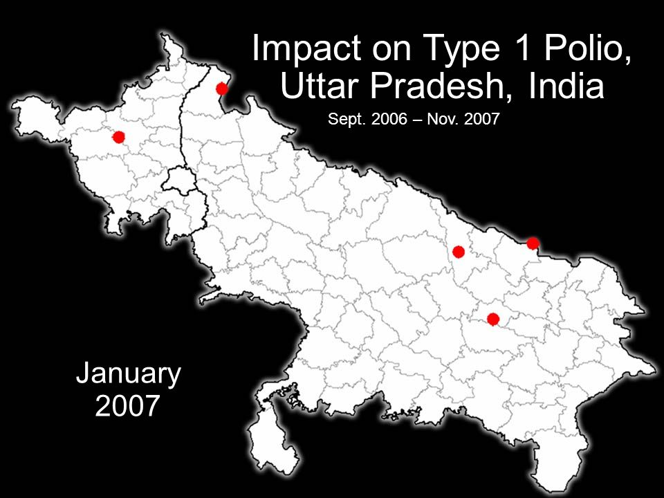 Impact on Type 1 Polio, Uttar Pradesh, India