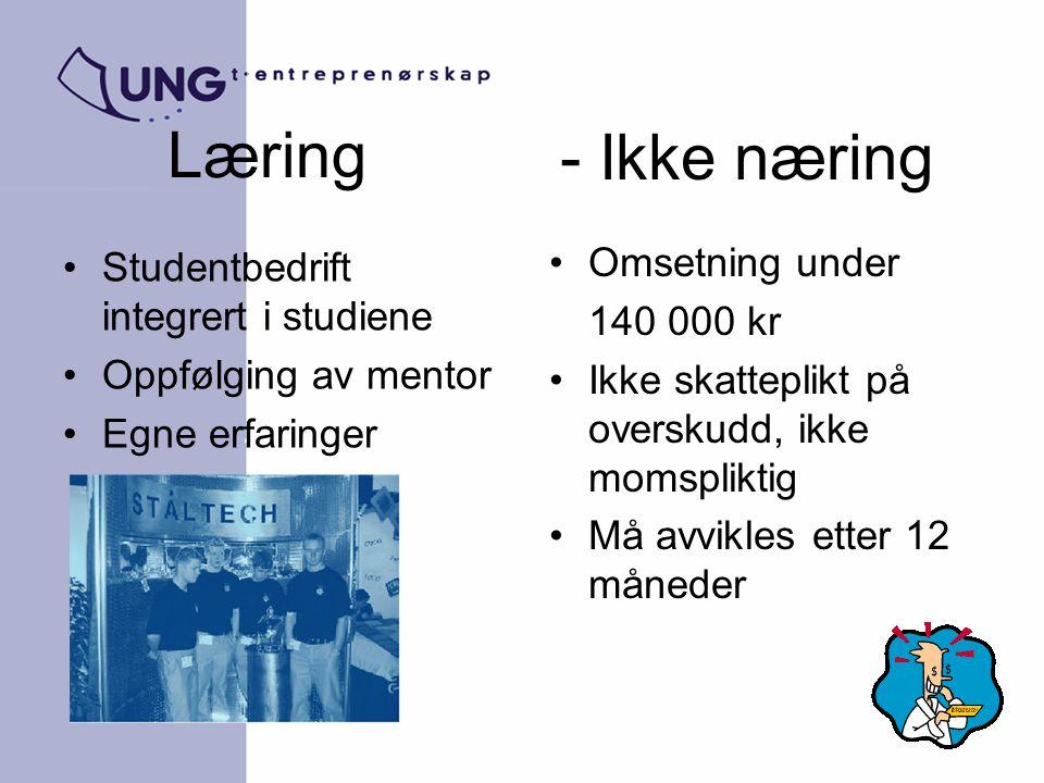 Læring - Ikke næring Omsetning under 140 000 kr