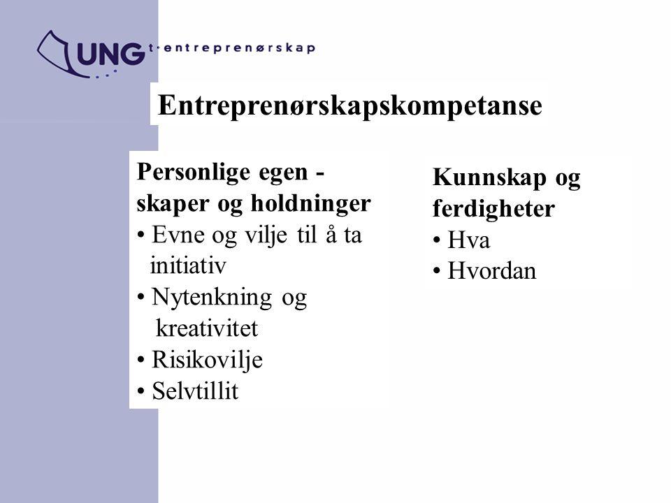 Entreprenørskapskompetanse