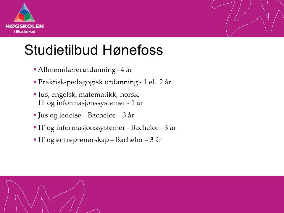 Studietilbud Hønefoss