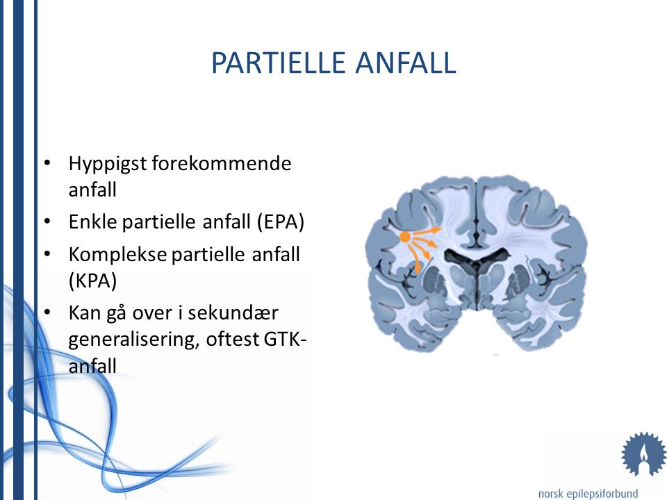 PARTIELLE ANFALL Hyppigst forekommende anfall