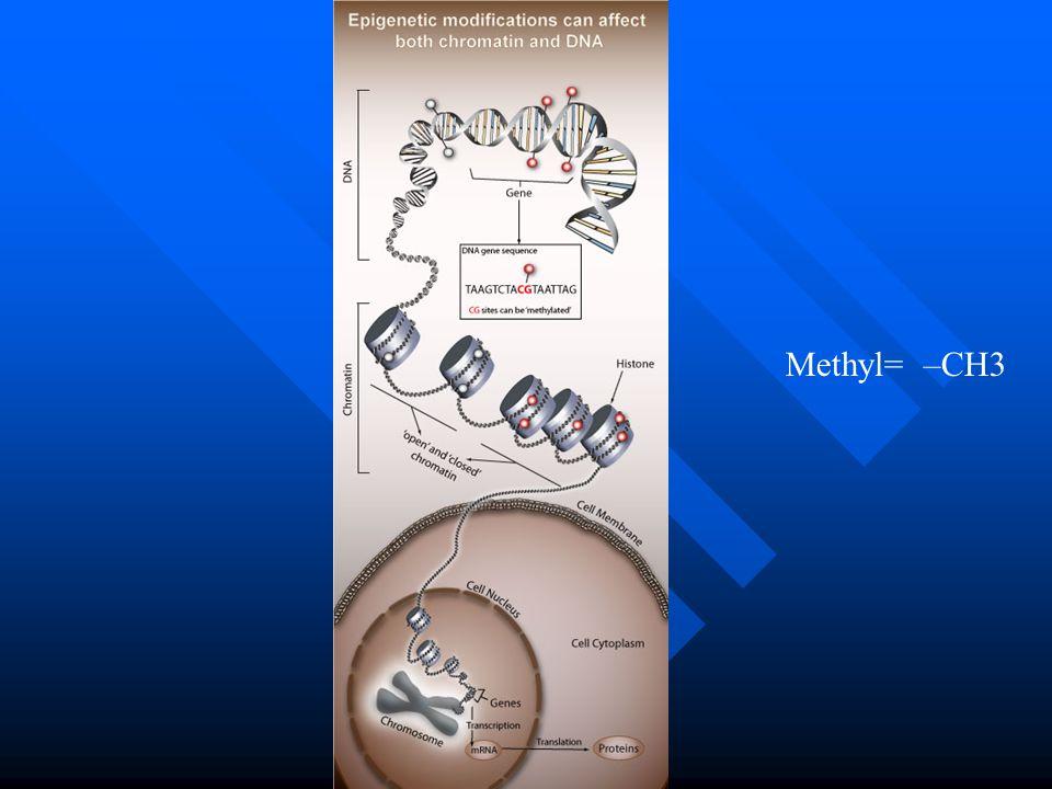 Methyl= –CH3