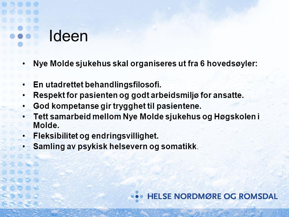 Ideen Nye Molde sjukehus skal organiseres ut fra 6 hovedsøyler: