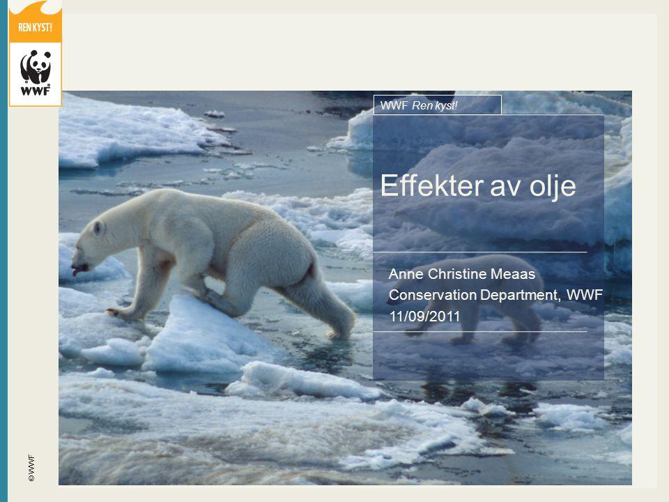 Effekter av olje Anne Christine Meaas Conservation Department, WWF