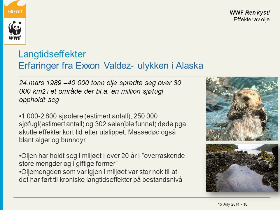 Langtidseffekter Erfaringer fra Exxon Valdez- ulykken i Alaska