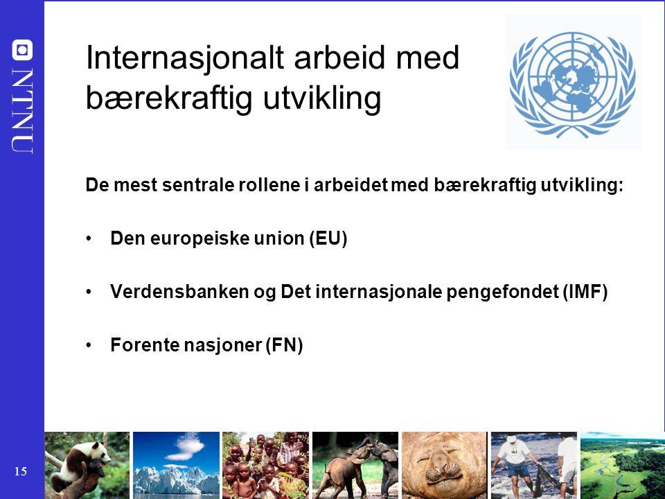 Internasjonalt arbeid med bærekraftig utvikling