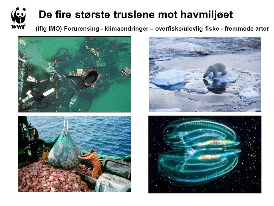 De fire største truslene mot havmiljøet