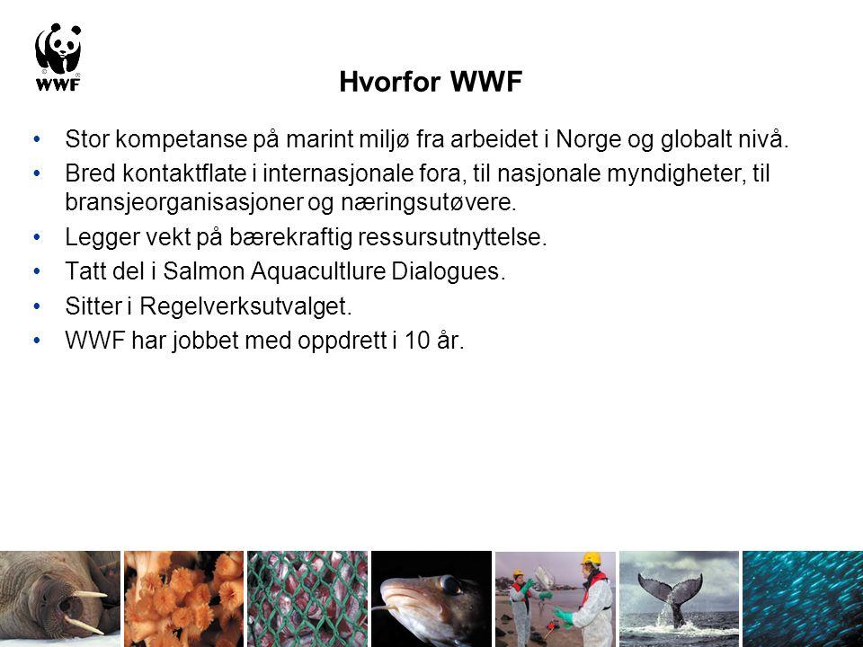 Hvorfor WWF Stor kompetanse på marint miljø fra arbeidet i Norge og globalt nivå.