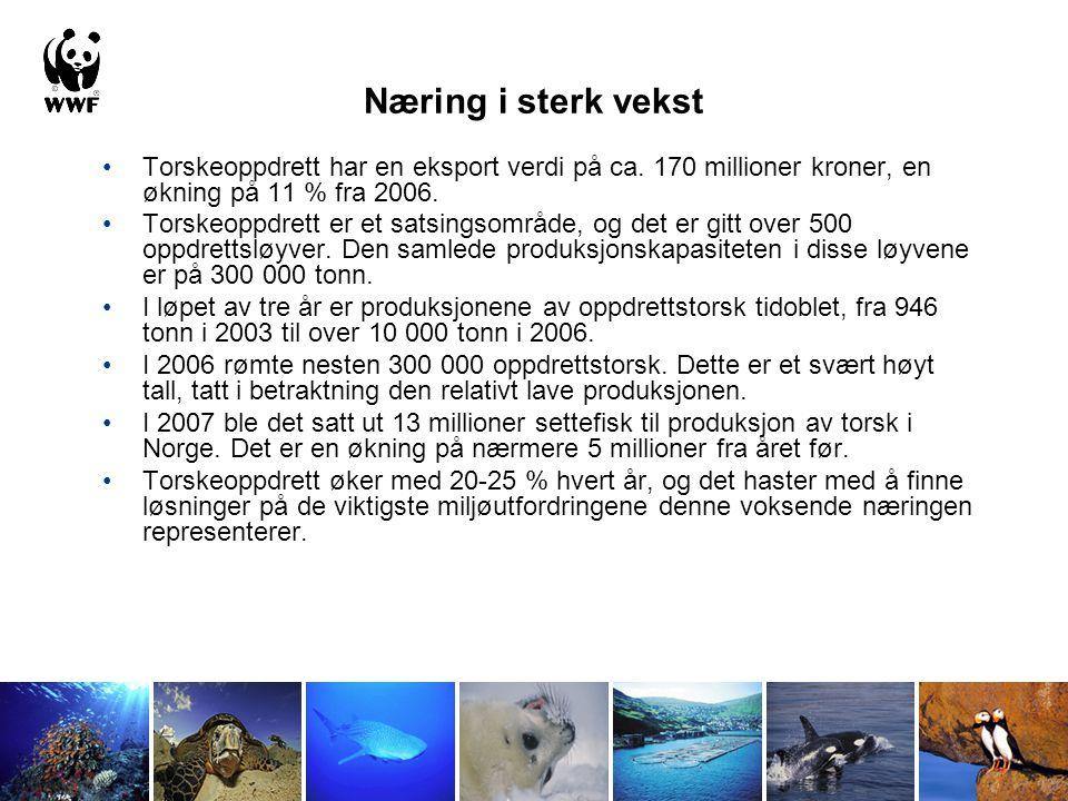 Næring i sterk vekst Torskeoppdrett har en eksport verdi på ca. 170 millioner kroner, en økning på 11 % fra 2006.