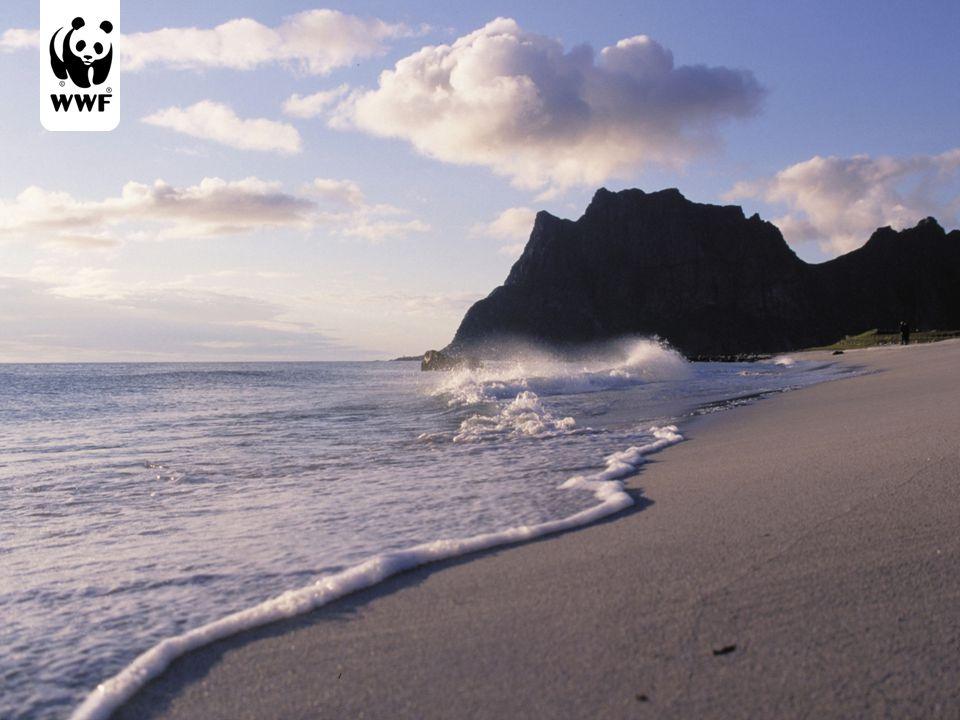 Norge har mer enn 80 000 km (83 281 km) strandlinje og 2,2 millioner kvadratkm sjøareal.