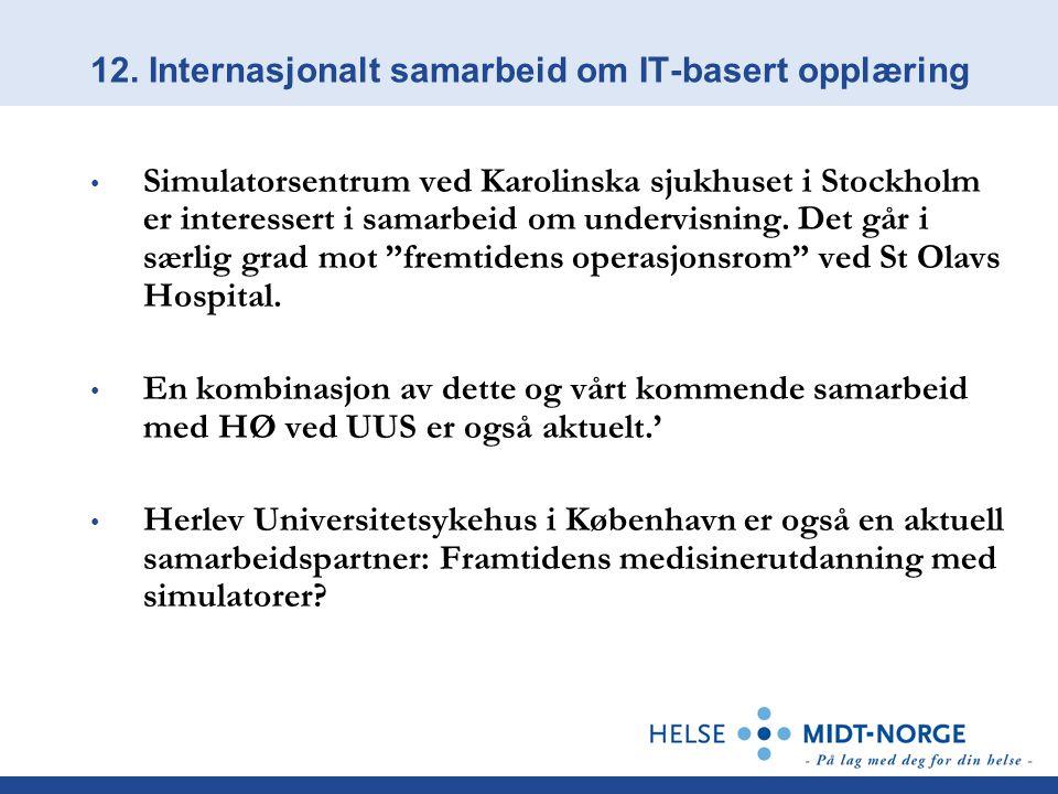 12. Internasjonalt samarbeid om IT-basert opplæring