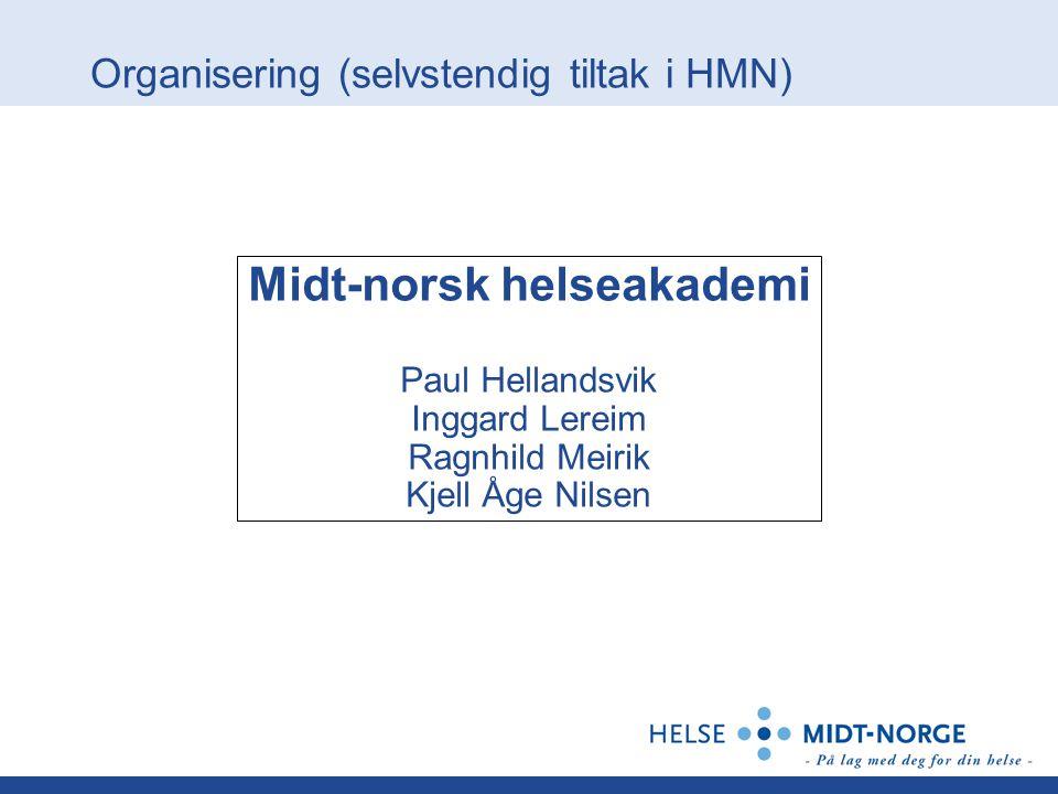 Organisering (selvstendig tiltak i HMN)
