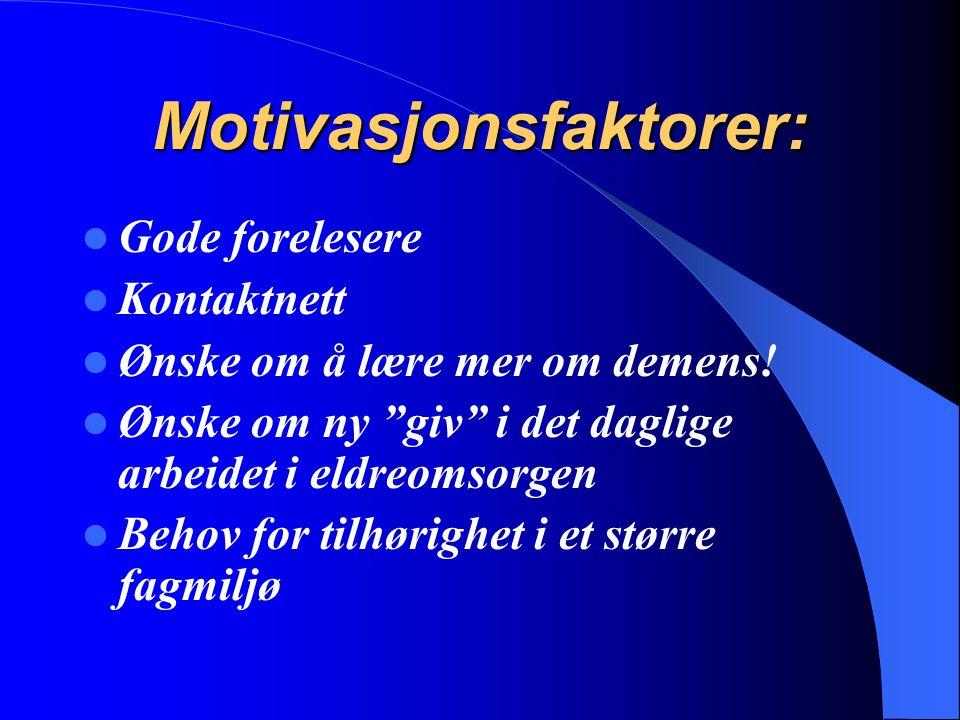 Motivasjonsfaktorer: