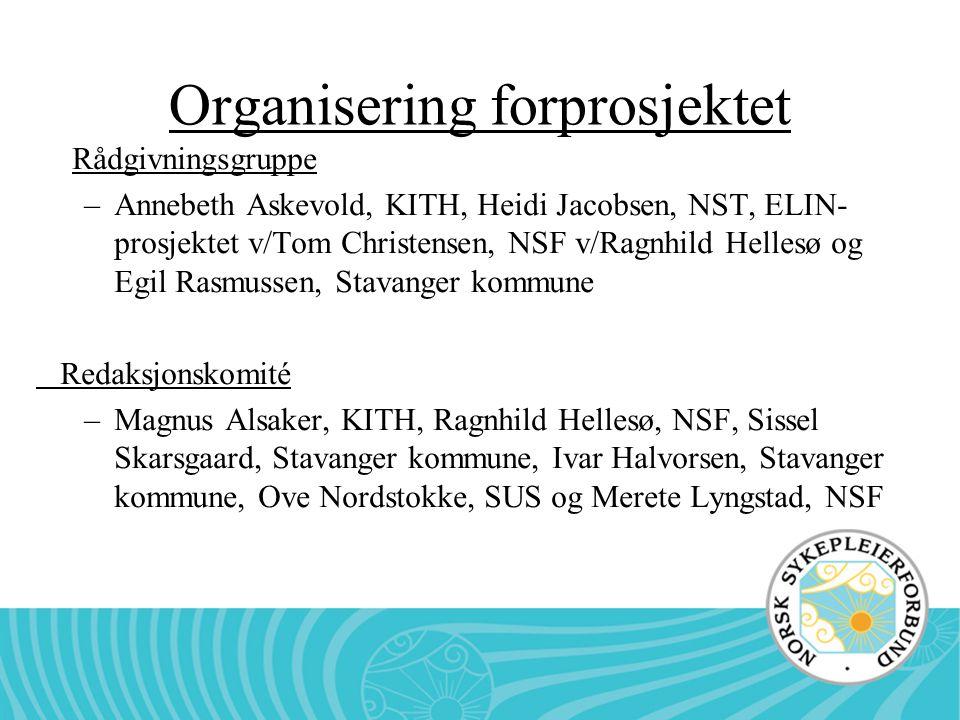 Organisering forprosjektet