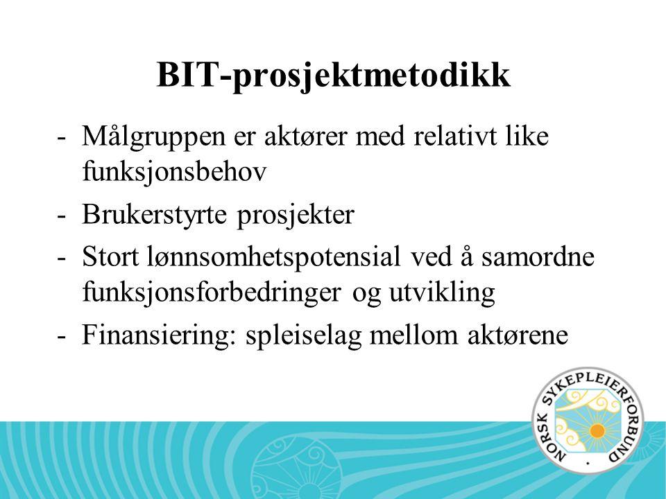 BIT-prosjektmetodikk