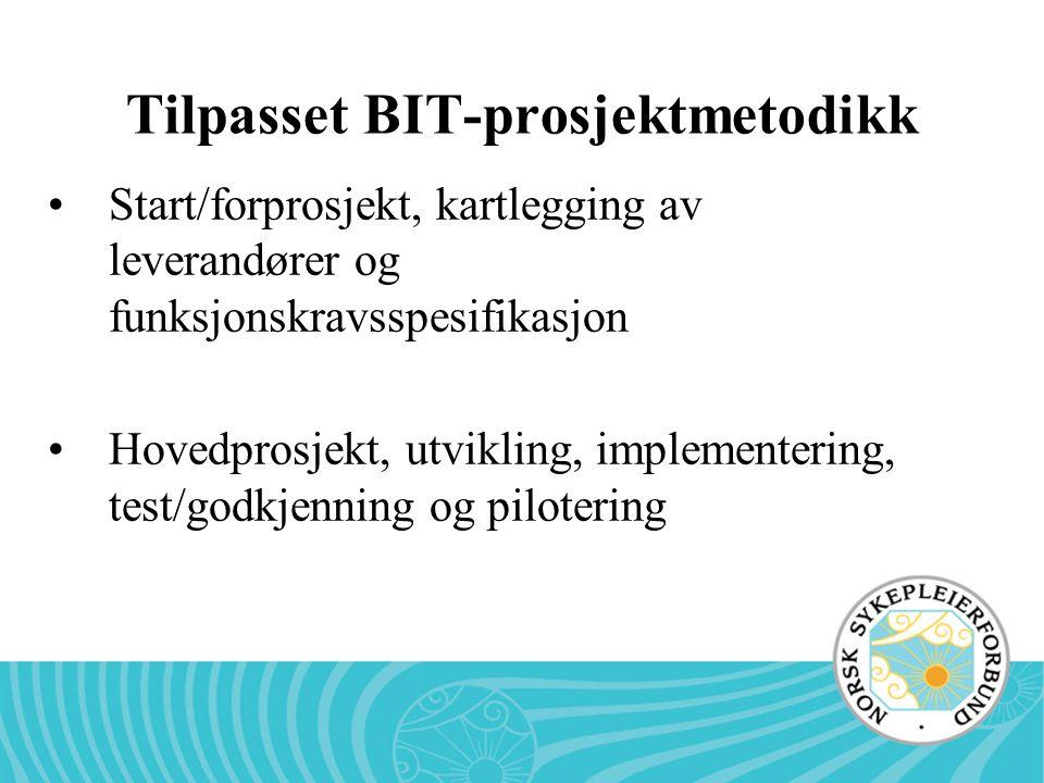 Tilpasset BIT-prosjektmetodikk