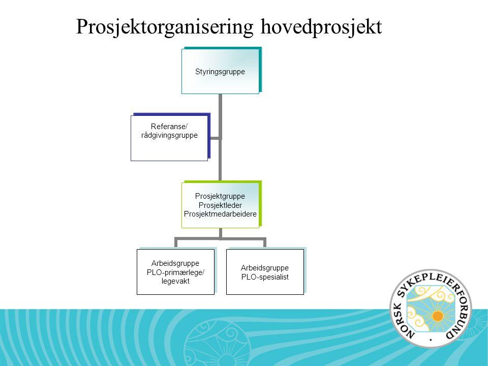 Prosjektorganisering hovedprosjekt