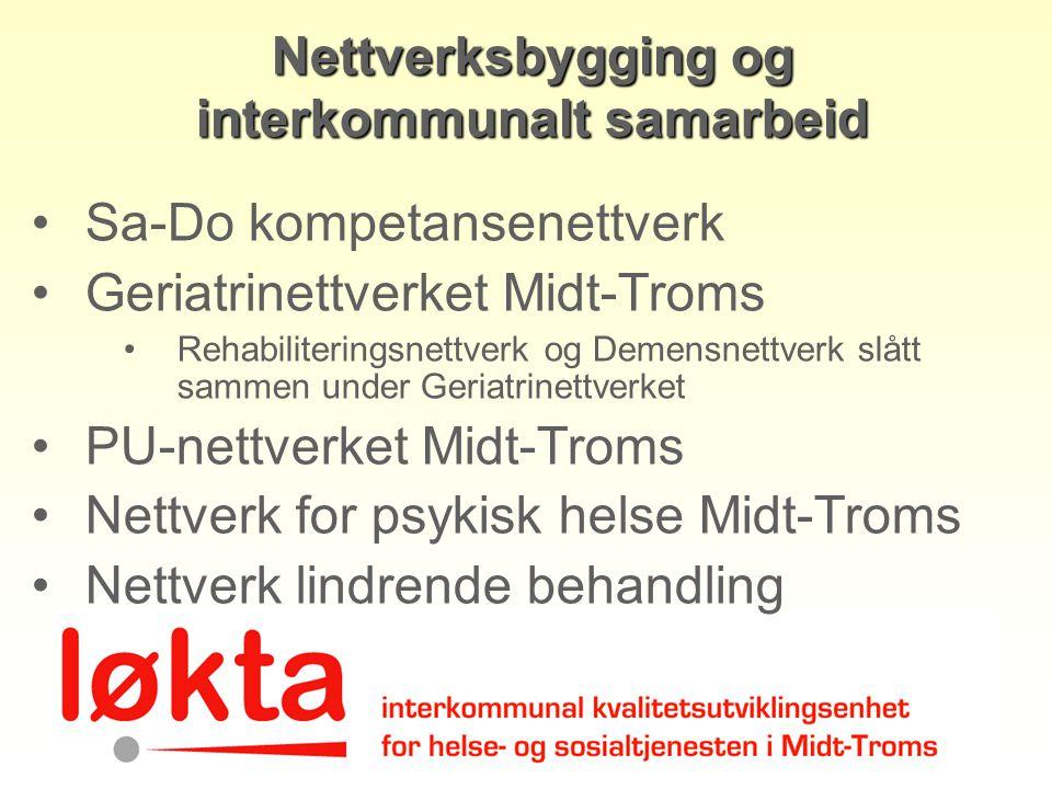 Nettverksbygging og interkommunalt samarbeid