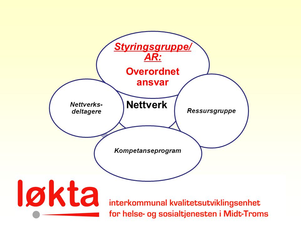 Nettverk Styringsgruppe/ AR: Overordnet ansvar Kompetanseprogram
