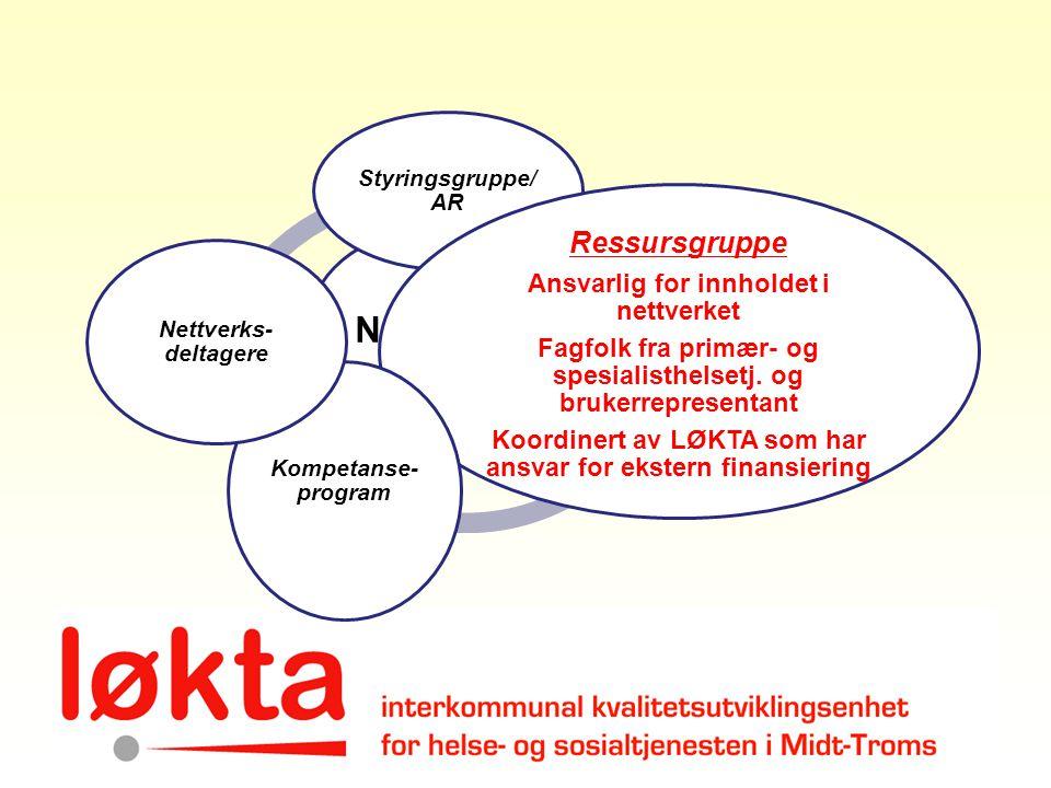 Nettverk Ressursgruppe Ansvarlig for innholdet i nettverket