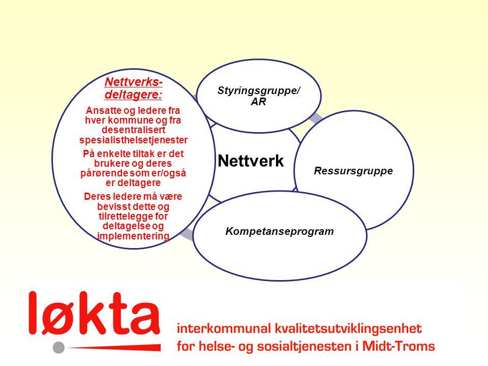 Nettverks-deltagere: