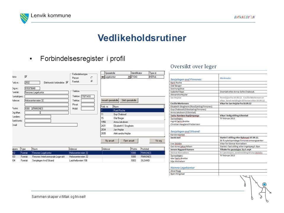 Vedlikeholdsrutiner Forbindelsesregister i profil
