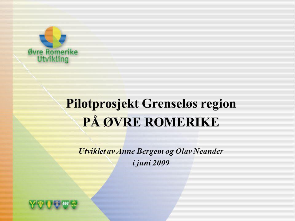 Pilotprosjekt Grenseløs region Utviklet av Anne Bergem og Olav Neander