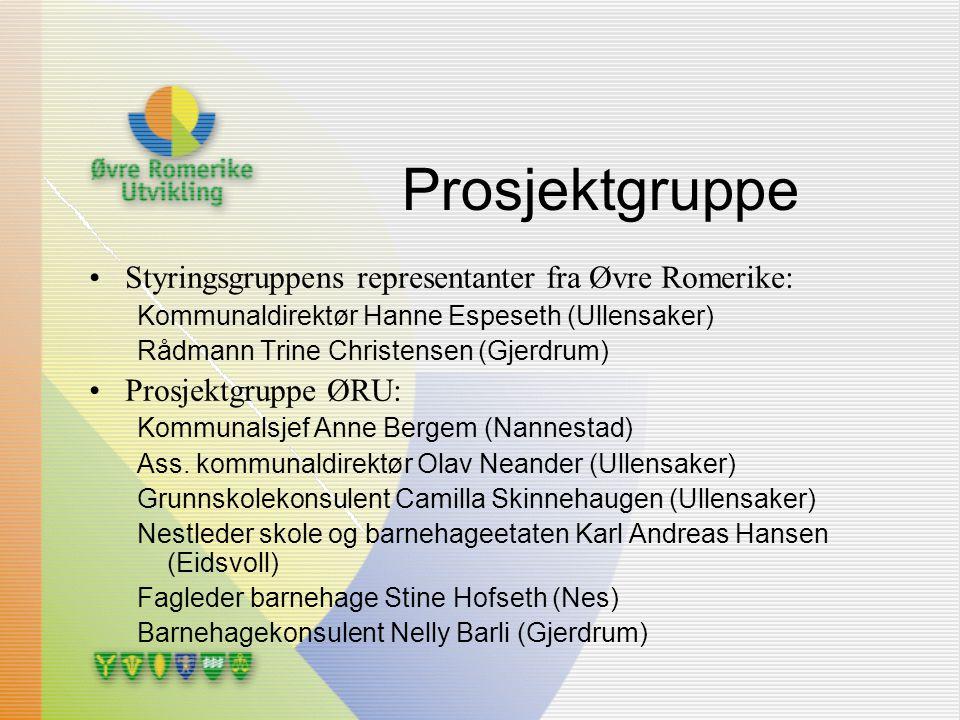Prosjektgruppe Styringsgruppens representanter fra Øvre Romerike: