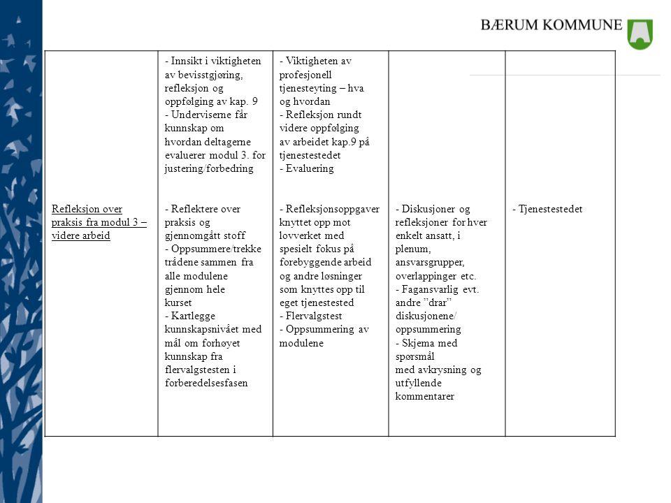 Refleksjon over praksis fra modul 3 – videre arbeid. - Innsikt i viktigheten. av bevisstgjøring,