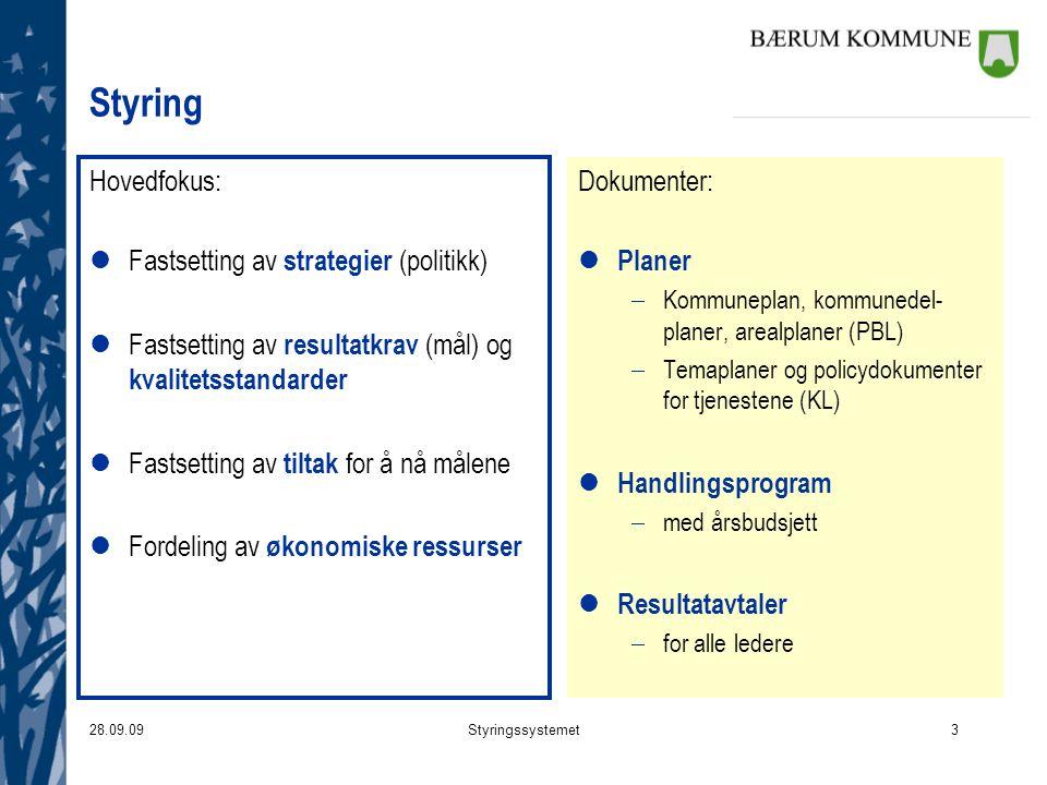 Styring Hovedfokus: Fastsetting av strategier (politikk)