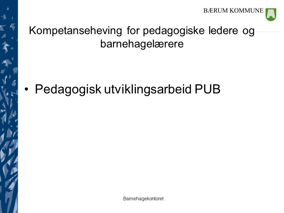 Kompetanseheving for pedagogiske ledere og barnehagelærere