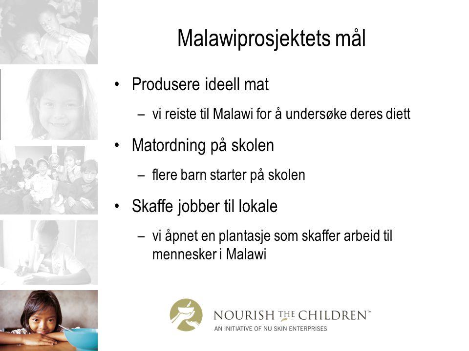 Malawiprosjektets mål