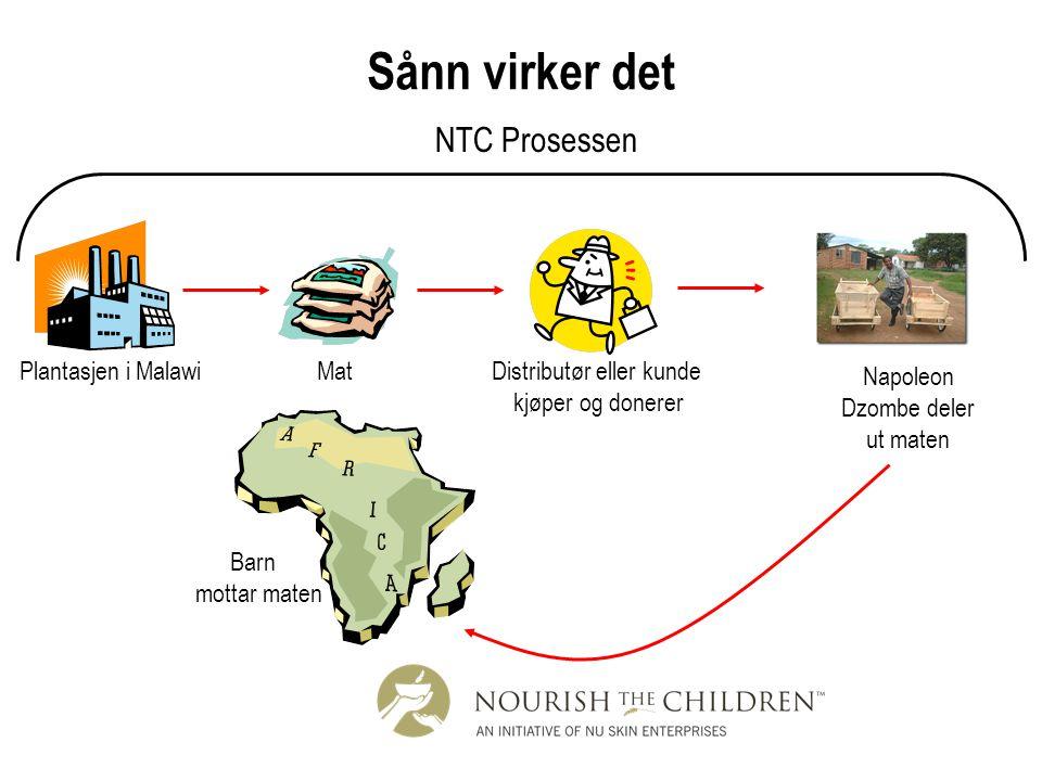 Sånn virker det NTC Prosessen Plantasjen i Malawi Mat