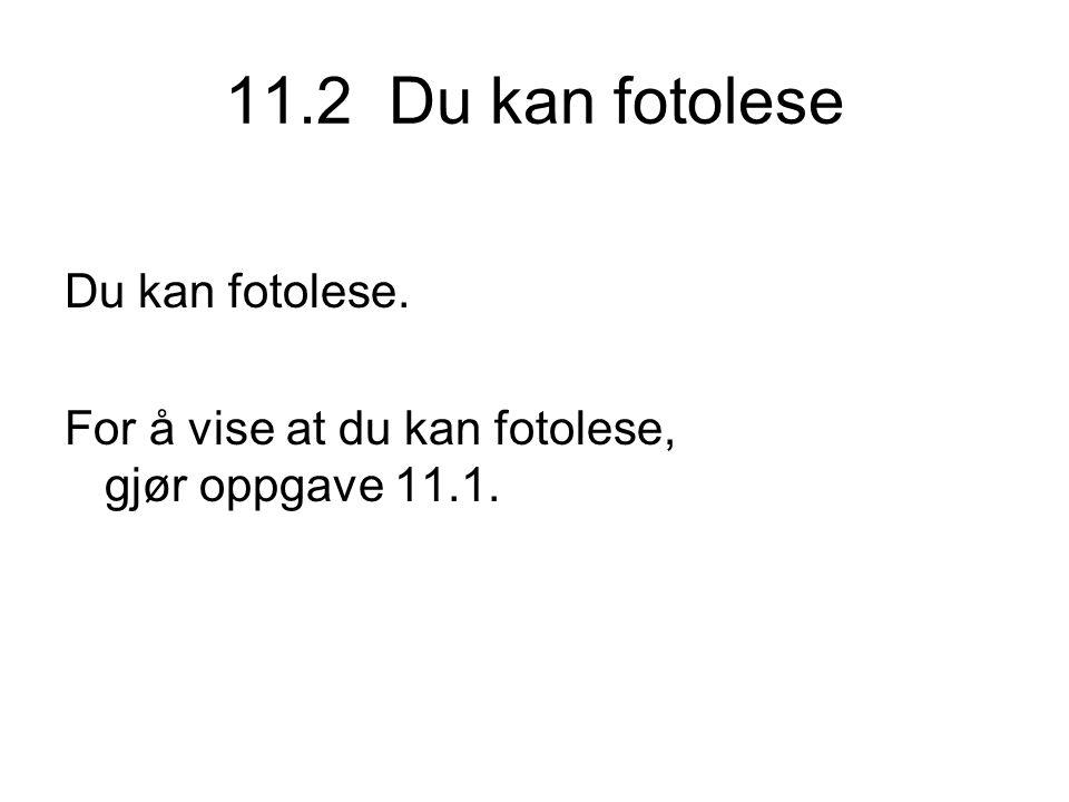 11.2 Du kan fotolese Du kan fotolese.