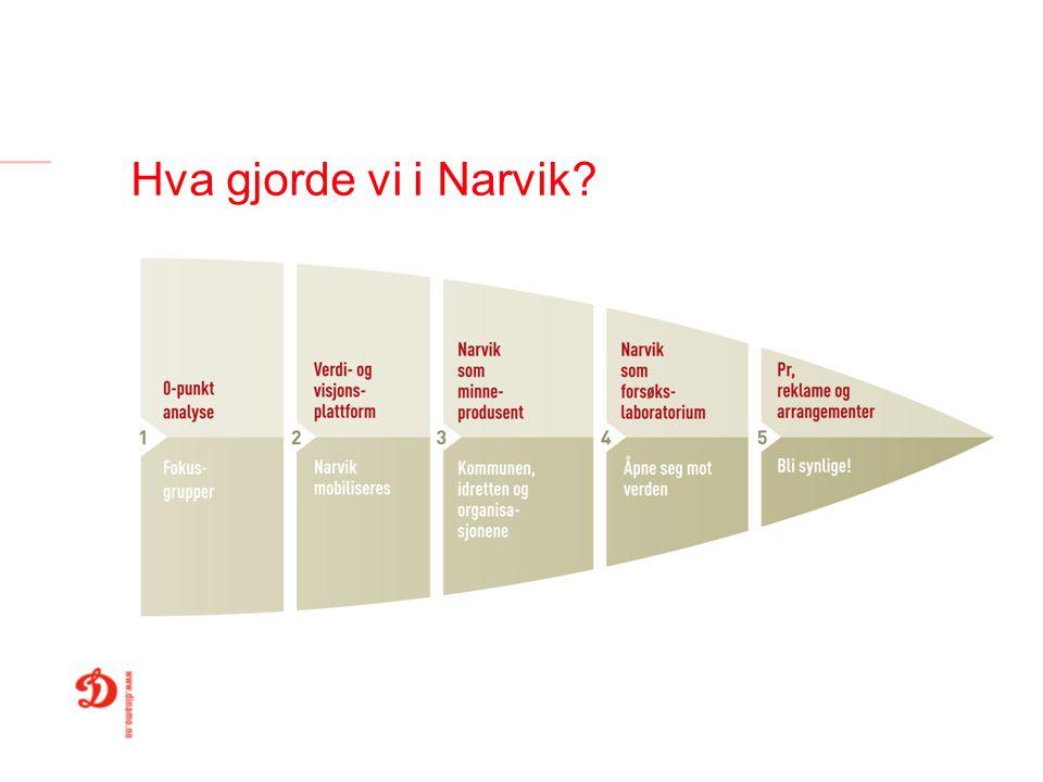 Hva gjorde vi i Narvik
