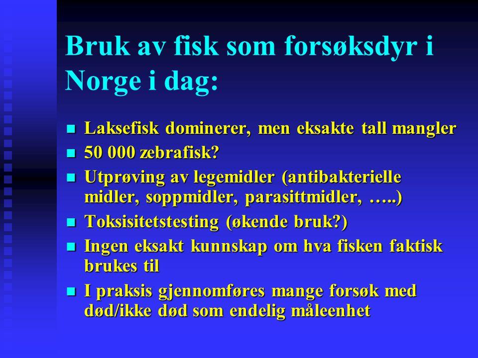 Bruk av fisk som forsøksdyr i Norge i dag: