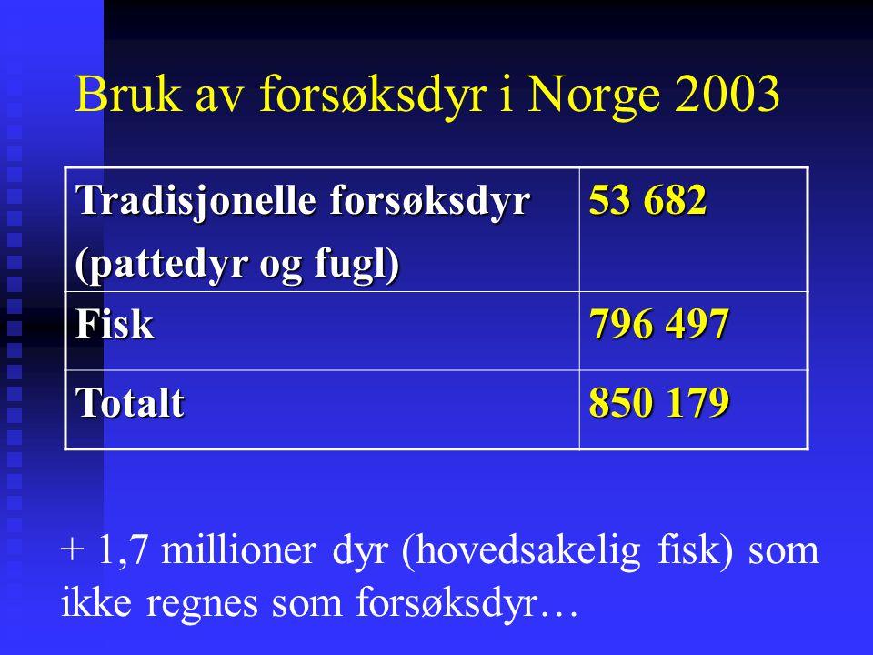 Bruk av forsøksdyr i Norge 2003