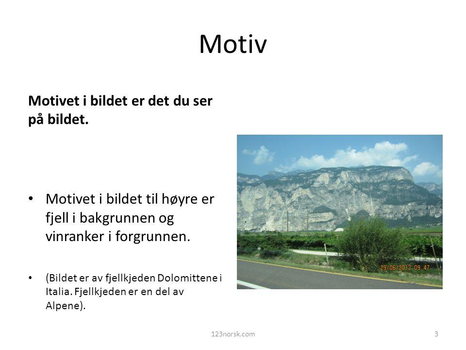 Motiv Motivet i bildet er det du ser på bildet.