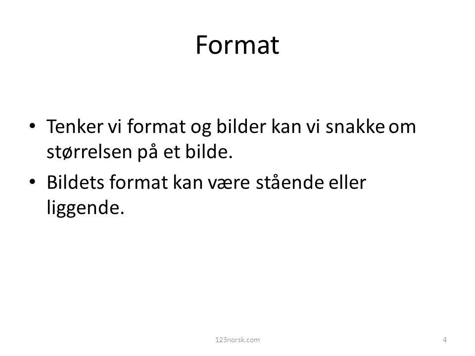 Format Tenker vi format og bilder kan vi snakke om størrelsen på et bilde. Bildets format kan være stående eller liggende.