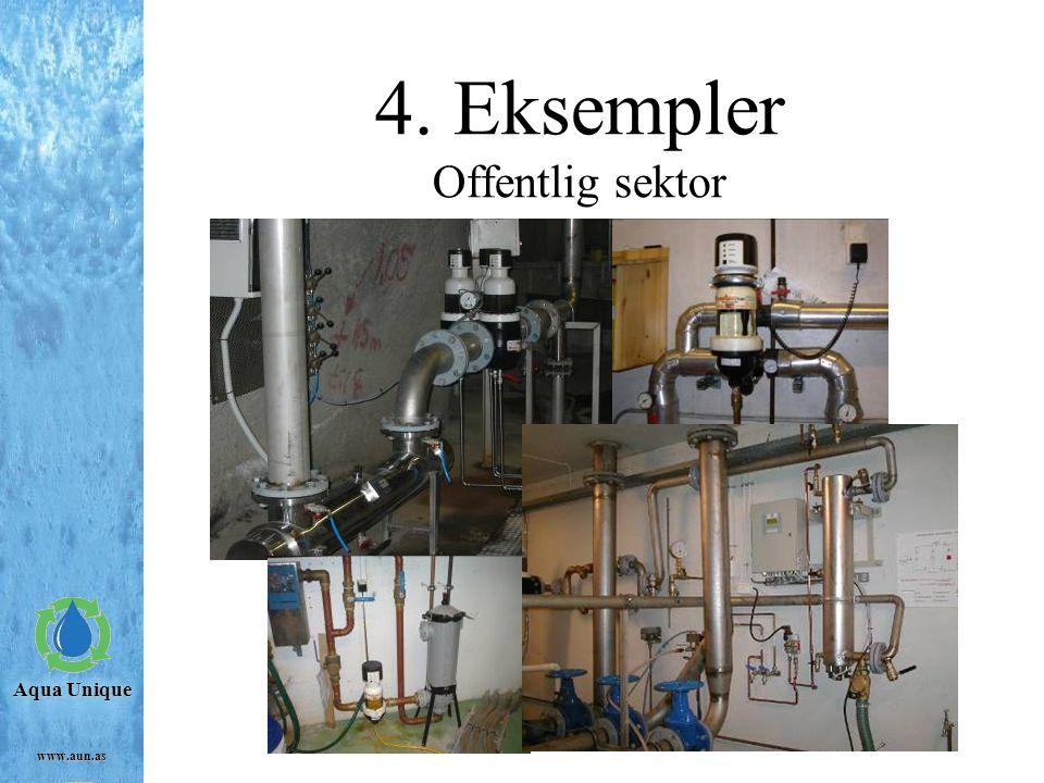 4. Eksempler Offentlig sektor