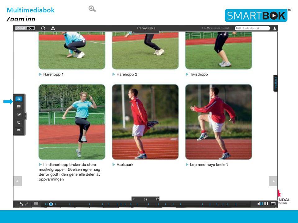 Multimediabok Zoom inn