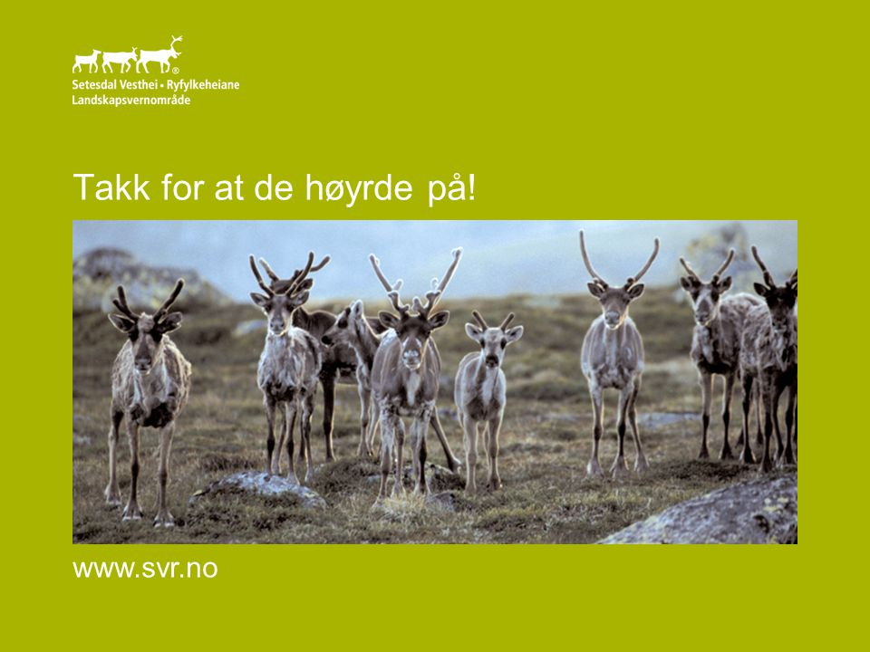 Takk for at de høyrde på! www.svr.no