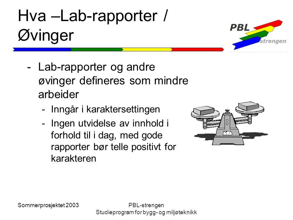 Hva –Lab-rapporter / Øvinger